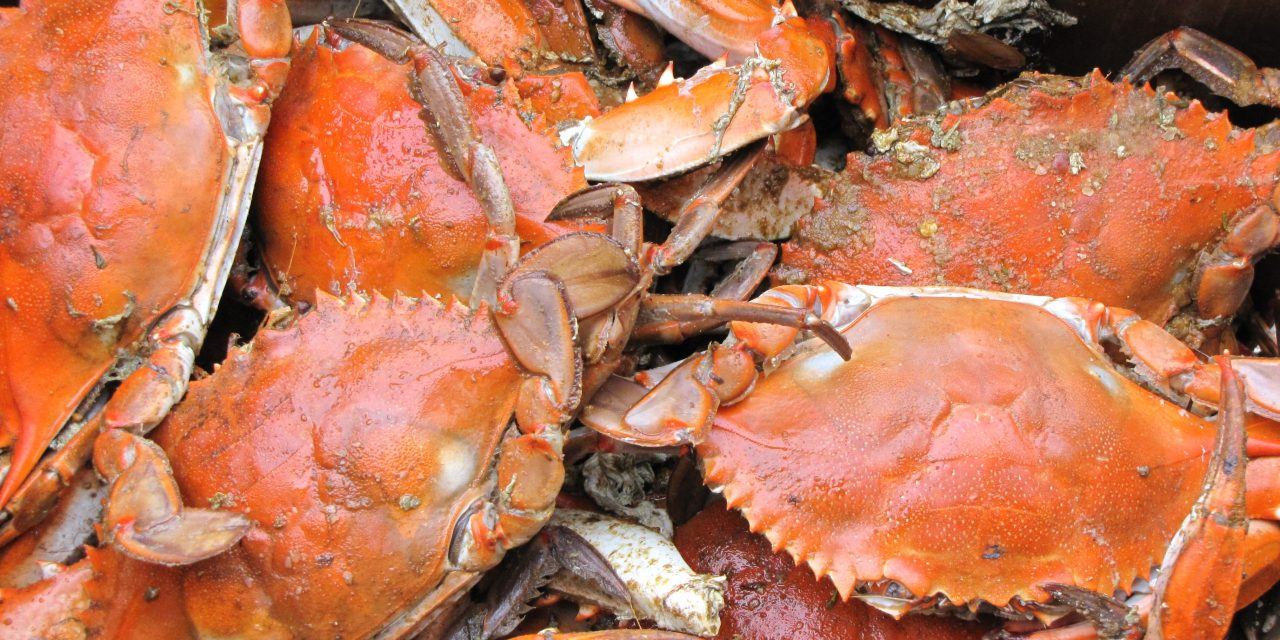 Black-owned crab houses in Baltimore